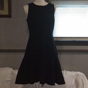 Z) Women's Brand New Beautiful J. Crew Dress w/tag